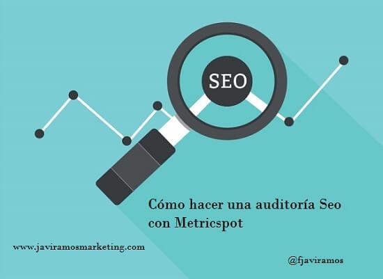 Metricspot Como Hacer Auditoria Seo Profesional Posicionamiento Web