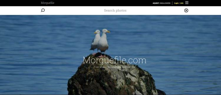 morguefile-fotos-gratis-alta-resolucion