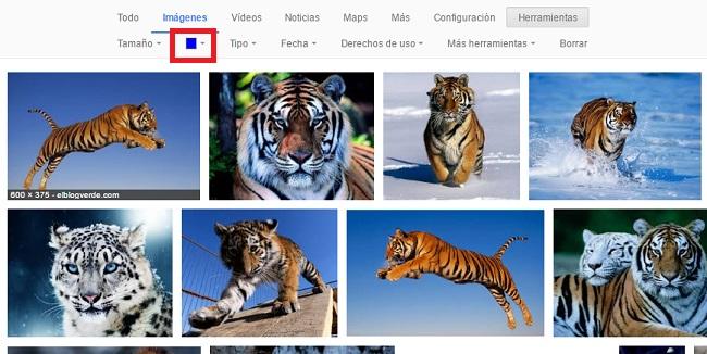 google imagene